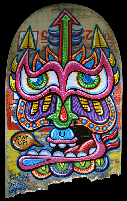 chris dyer color ink book skate
